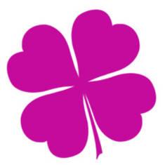 Magenta - Пурпурно-Розовый